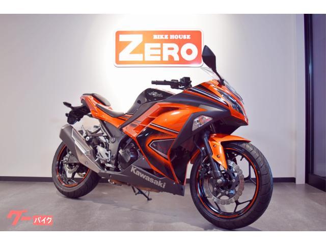 Ninja 250 SE ETC ヘルメットホルダー