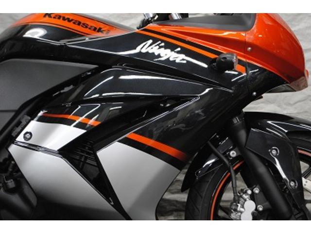 カワサキ Ninja 250R SPエディション 300台限定モデル 新品HIDの画像(千葉県