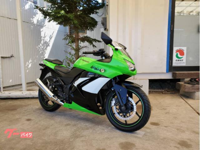 Ninja 250R ETC