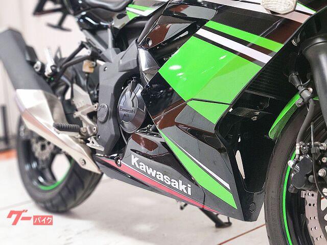 カワサキ Ninja 250SL ワンオーナー フェンダーレスの画像(北海道