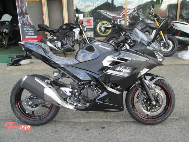 Ninja 250 2021年モデル