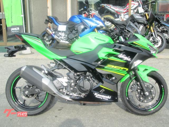 Ninja 250 KRT