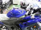 ヤマハ YZF-R25 2018モデルの画像(新潟県