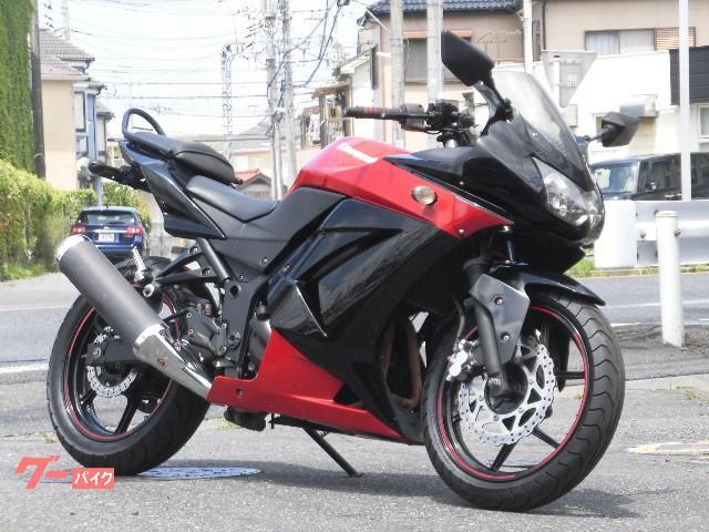 Ninja 250R SE