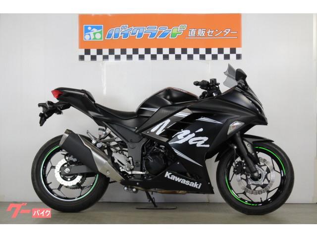 カワサキ Ninja 250 ABS KRTウィンターテストエディション グリップヒーターの画像(東京都