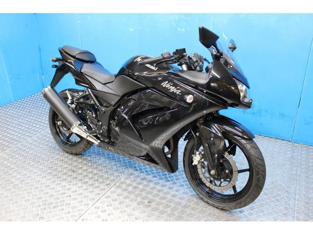 カワサキ Ninja 250R ノーマル EX250Kモデルの画像(東京都
