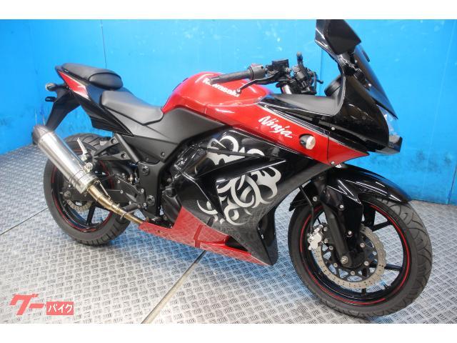 Ninja 250R  カスタムマフラー インジェクション EK250Kモデル