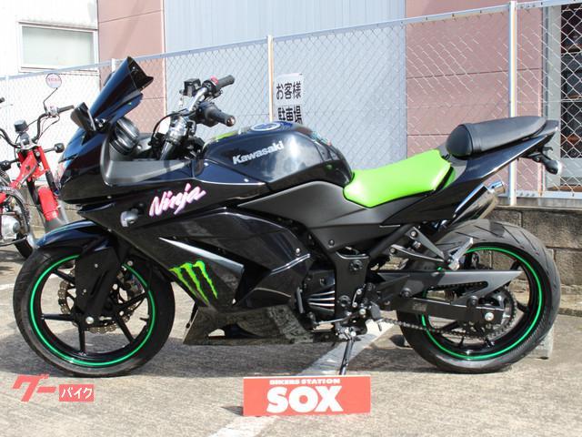 カワサキ Ninja 250R 社外マフラー装着済みの画像(埼玉県