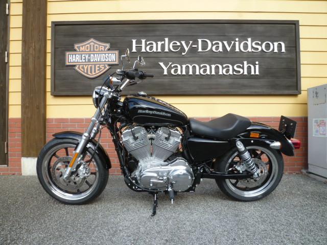 HARLEY-DAVIDSON XL883L ローの画像(山梨県