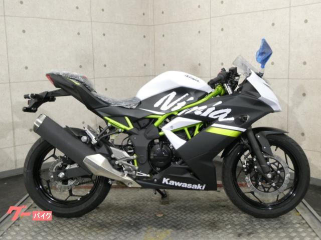 Ninja 250SL 37609