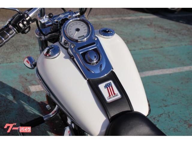 HARLEY-DAVIDSON FXDI 35周年記念モデル エンジンガード付の画像(千葉県