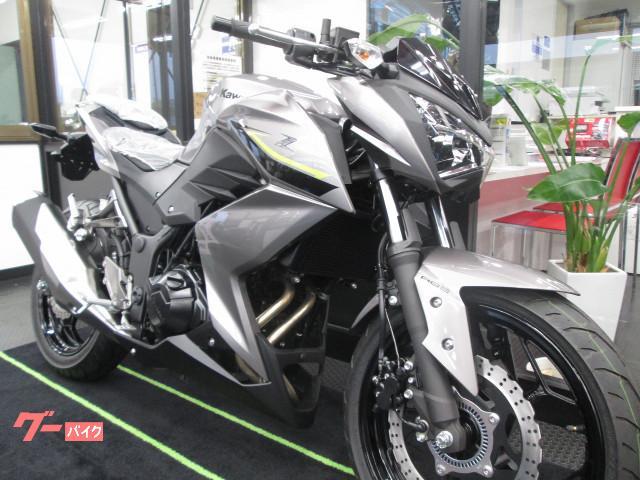 カワサキ Z250 ABSの画像(千葉県