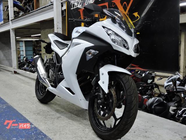 Ninja 250 2013年モデル ホワイト ノーマル