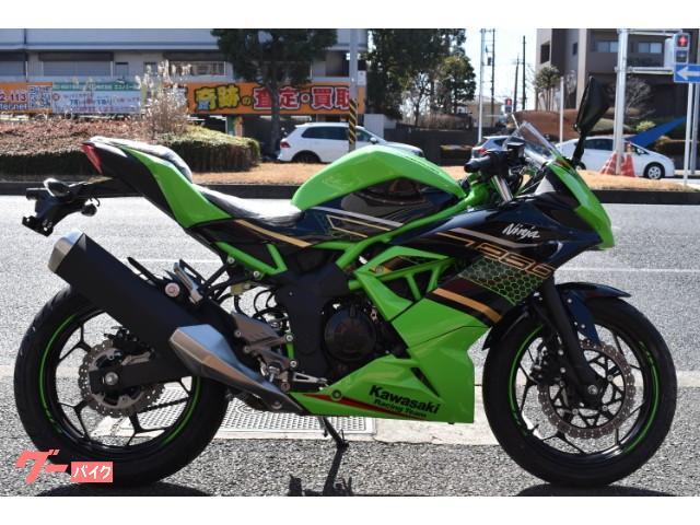 Ninja 250SL インドネシアモデル