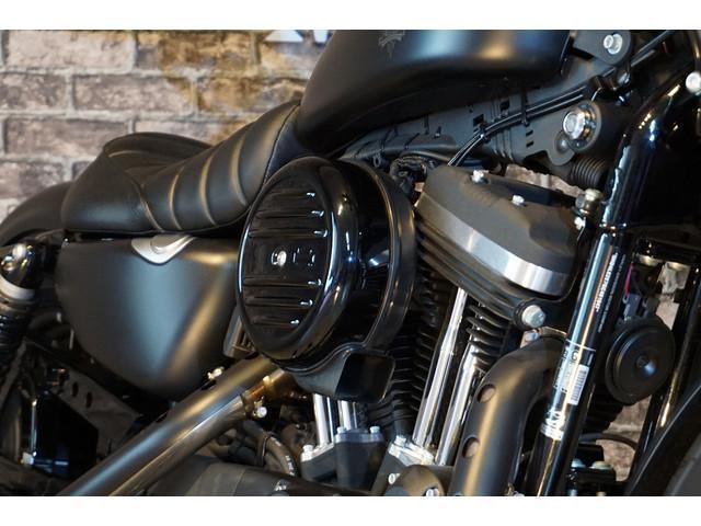 HARLEY-DAVIDSON XL883N アイアン マッドブラック仕様 シングルソロシート 2015モデルの画像(埼玉県