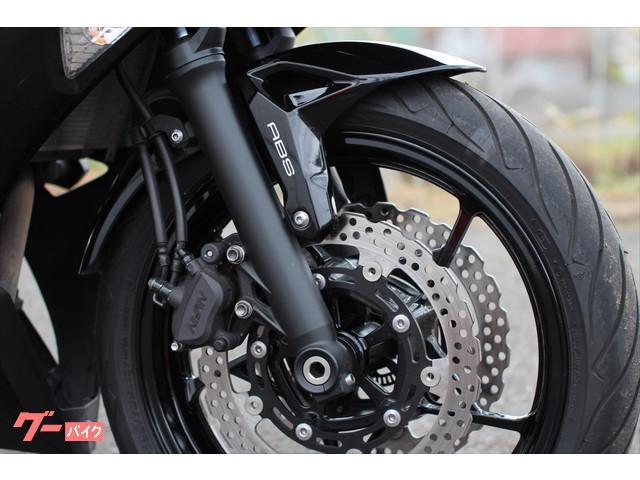 カワサキ Ninja 650 ABS エンジンスライダー装備の画像(北海道