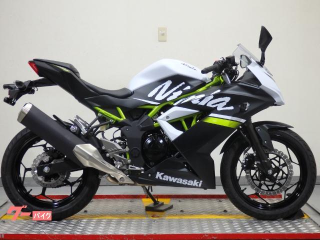 Ninja 250SL インドネシアモデル 37614