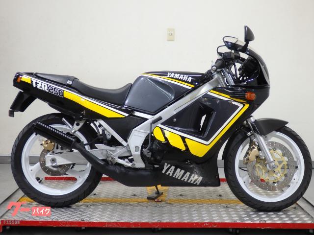 TZR250 1KT タムラカラー YSP限定車  37743