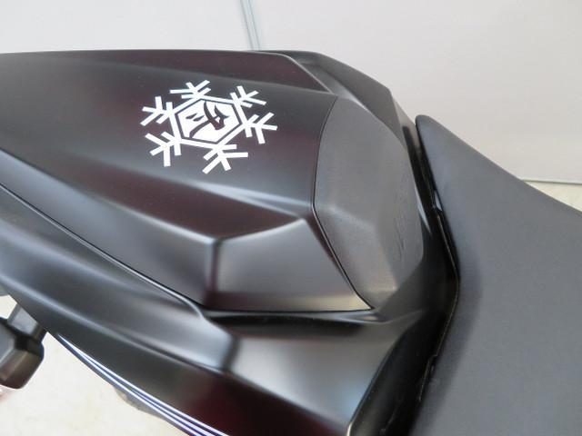 カワサキ Ninja ZX-10RR UKモデルの画像(新潟県