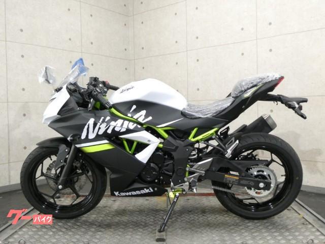 カワサキ Ninja 250SL インドネシア仕様 30200の画像(埼玉県