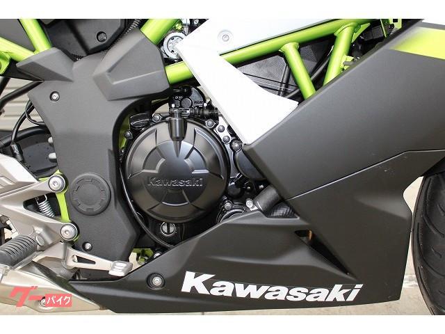 カワサキ Ninja 250SL 国内販売終了モデルの画像(茨城県