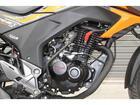 ホンダ ホーネット160R DX SpecialEdition 国内未発売モデルの画像(茨城県