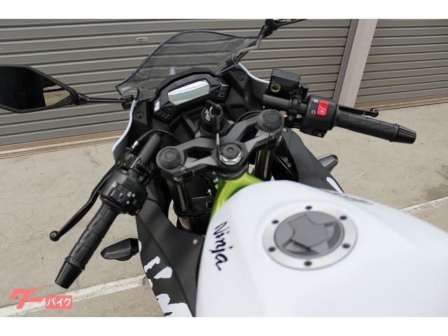 カワサキ Ninja 250SL 国内販売終了モデルの画像(千葉県