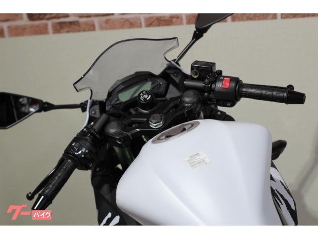 カワサキ Ninja 250SL 国内販売終了モデルの画像(山梨県