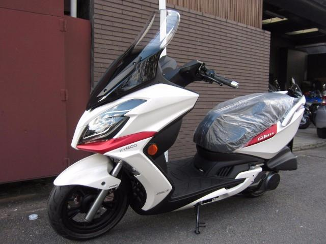 KYMCO G-DINK250  ABSの画像(京都府