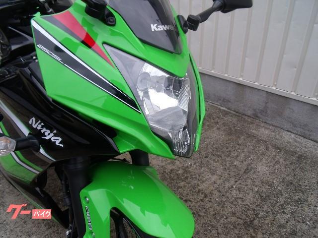 カワサキ Ninja 250SLの画像(大阪府