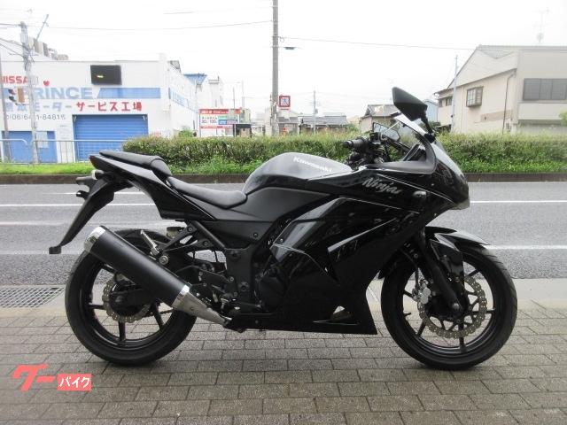 Ninja 250R
