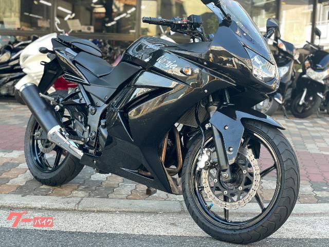 Ninja 250R ヘルメットホルダー アジャスタブルレバー