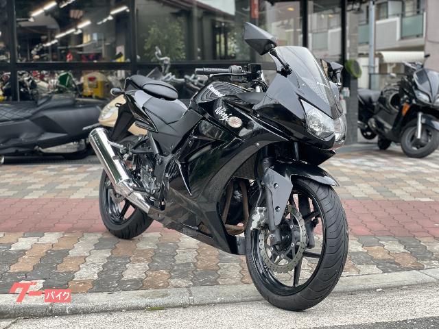 Ninja 250R ヘルメットホルダー