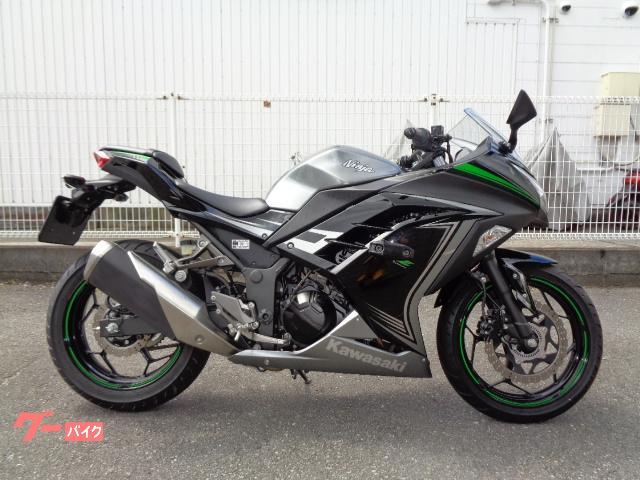 Ninja 250 ABS S/E  ETC付き