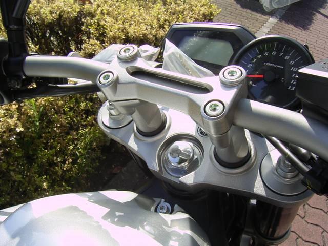 ヤマハ FZ-1   新車  2010年の画像(大阪府