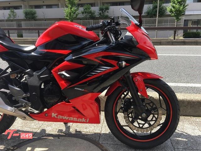 カワサキ Ninja 250SLの画像(兵庫県
