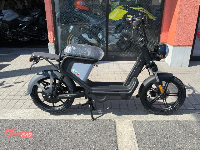 電動スクーター GOCCIA GEV600 新車