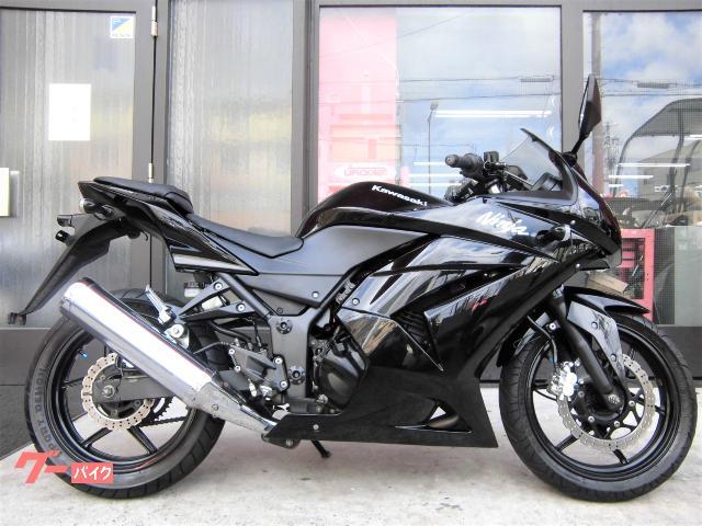 Ninja 250R ノーマル H07