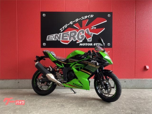 Ninja 250SL KRTエディション インポート
