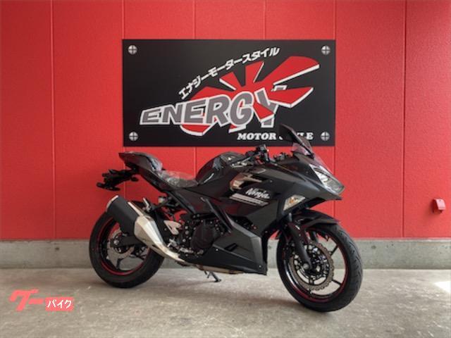 Ninja 250 ABS ニューモデル スリッパークラッチ
