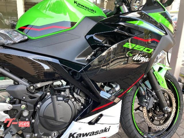 カワサキ Ninja 250 KRTエディション 2021年モデル 新車の画像(大阪府