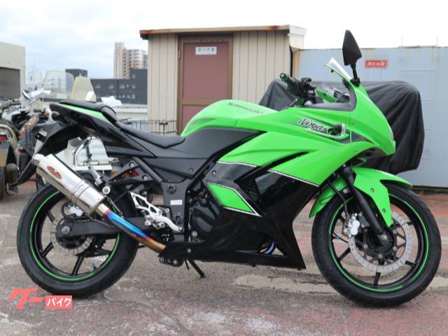 Ninja250R SE ビートジャパンフルエキ ビートジャパンバックステップ デイトナバーエンド ゼログラスクリーン