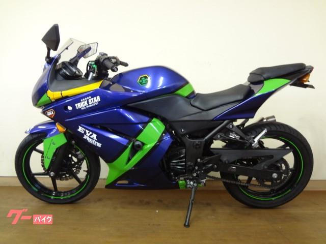 カワサキ Ninja 250R 社外外装の画像(京都府