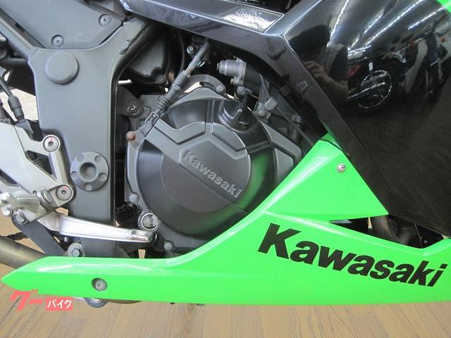 カワサキ Ninja 250 JMCA対応ビートサイレンサー フェンダーレスの画像(大阪府