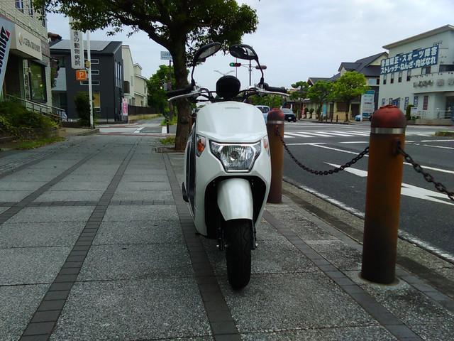 ホンダ ダンクの画像(大阪府