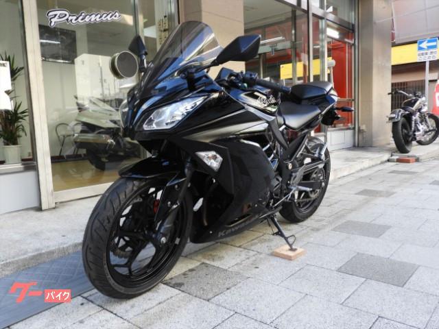 カワサキ Ninja 250 カスタムレバー スクリーン 2013年式の画像(兵庫県