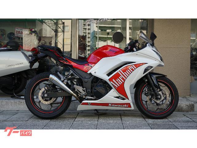 Ninja 250  SP忠男マフラー セパハン LEDライト ブレーキホース
