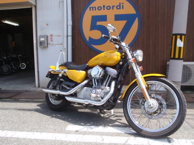 HARLEY-DAVIDSON XL883C  2004年の画像(兵庫県