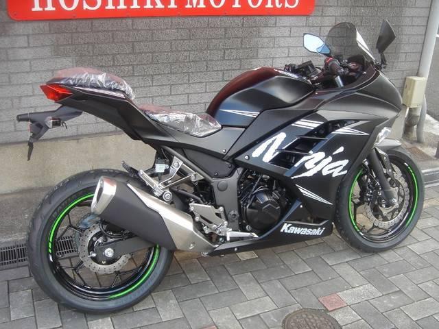 カワサキ Ninja 250 ABS KRT Winter Test Editionの画像(福岡県