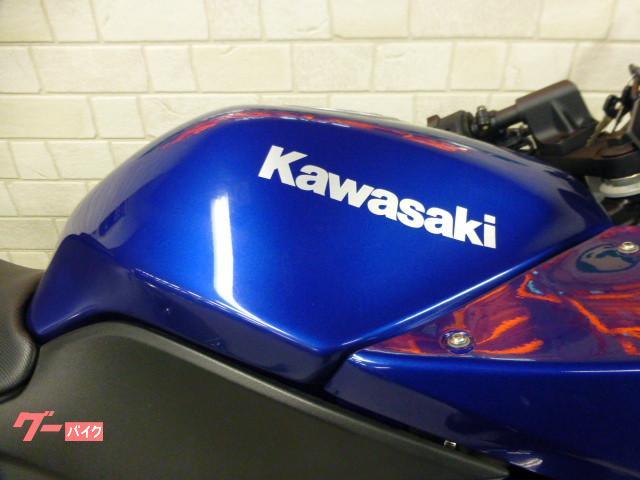 カワサキ Ninja 250R メットホルダー グーバイク鑑定車の画像(熊本県
